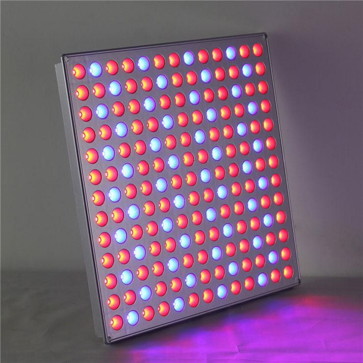 厚屹新品LEDqy288千赢国际灯方板qy288千赢国际灯亮灯图片展示
