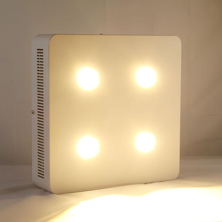 LED透镜qy288千赢国际灯CREE800Wqy288千赢国际生长灯亮灯美景图片