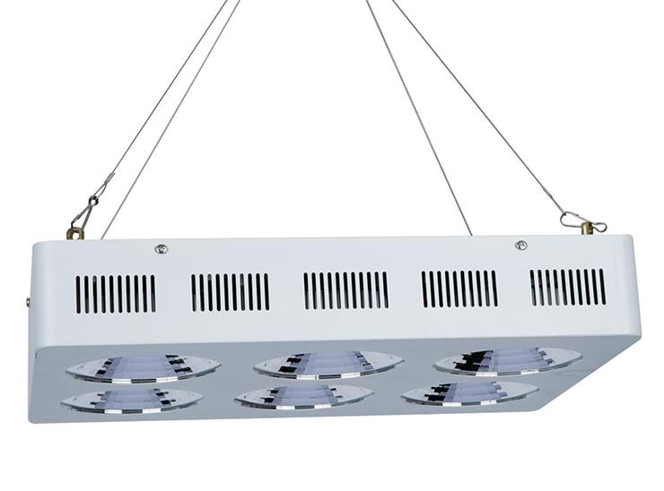 厚屹600W独家专利产品COB加反光杯LEDqy288千赢国际灯图片模拟悬挂安装展示