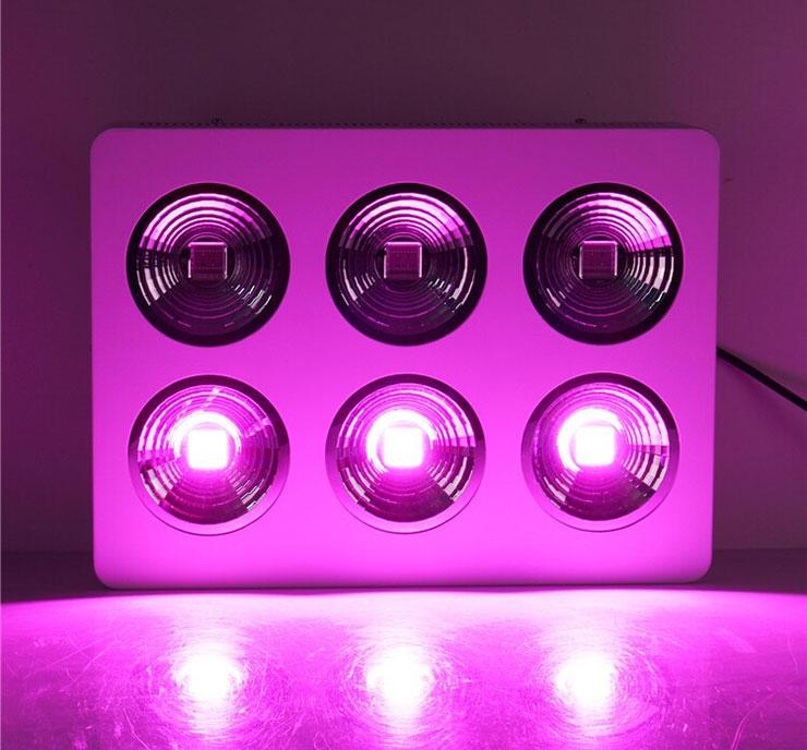 厚屹专利产品COB加反光杯LEDqy288千赢国际灯图片单排亮灯展示