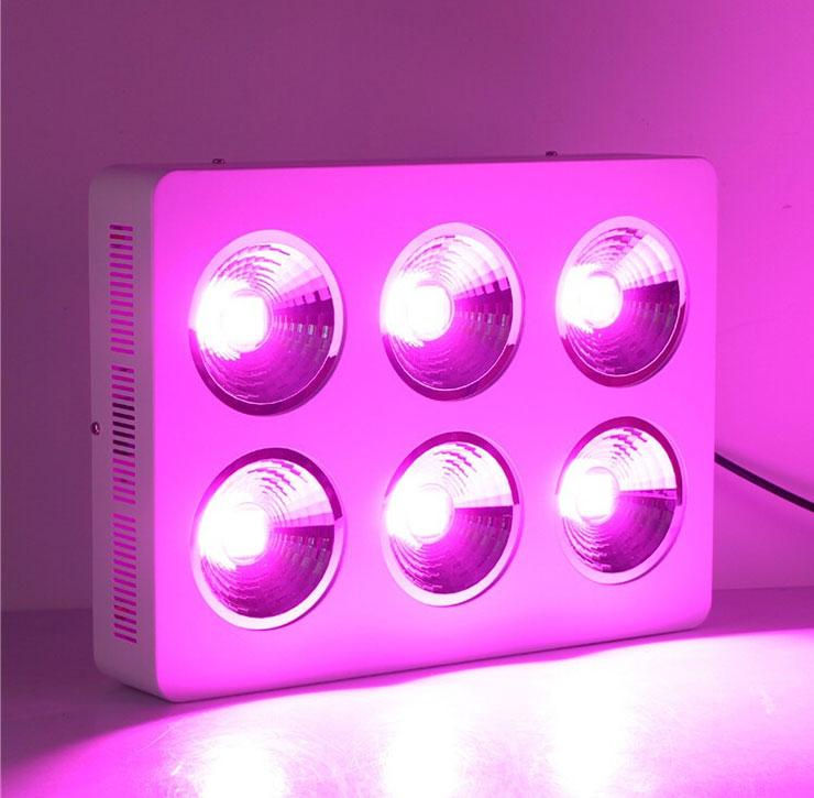 厚屹独家专利产品COB加反光杯LEDqy288千赢国际灯图片同时点亮双排展示